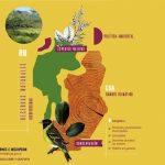 I° Jornadas sobre Plantas Nativas de Córdoba, Conservación y Cambio Climático