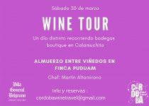WineTour: Turismo, Paisajes y Excelentes Vinos